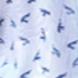 Plave ptičice